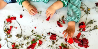 flors-pitota